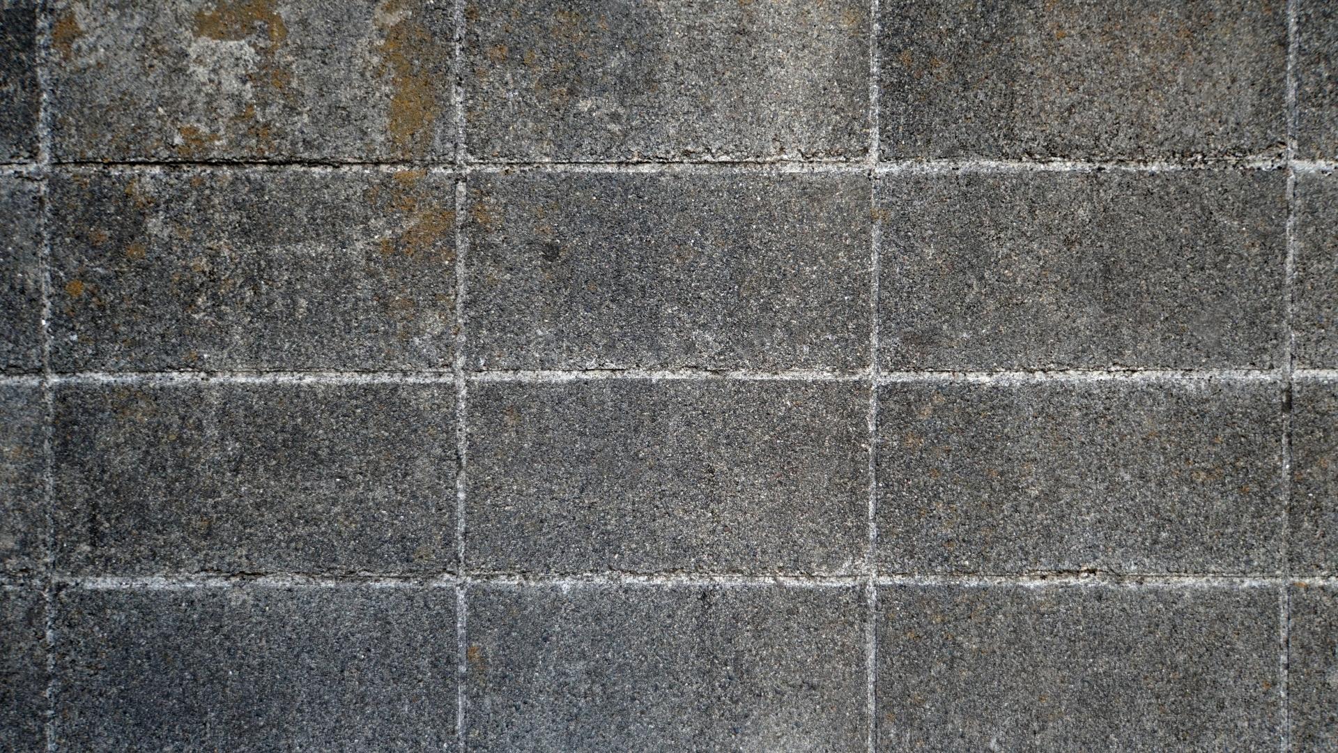 【レーザ事業部】レーザによる、コンクリート・ブロック・石に付着した苔落とし